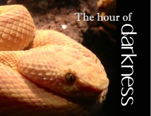 The hour of darkness