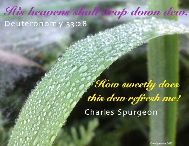 Heaven's dew