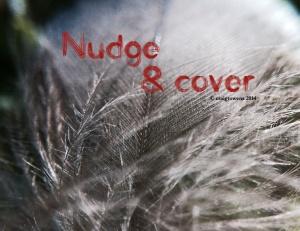 Nudge & cover