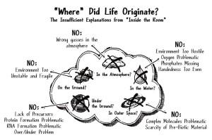 Where did life originate