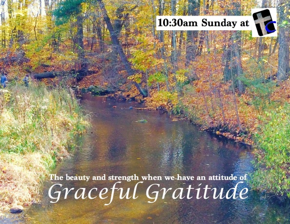 Graceful Gratitude