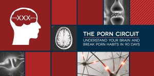 The Porn Circuit