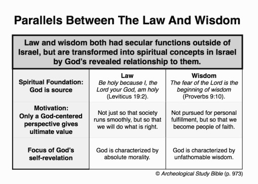 Parallels between law and wisdom