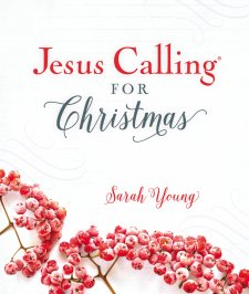 Jesus Christmas Quote.6 Quotes From Jesus Calling For Christmas Craig T Owens