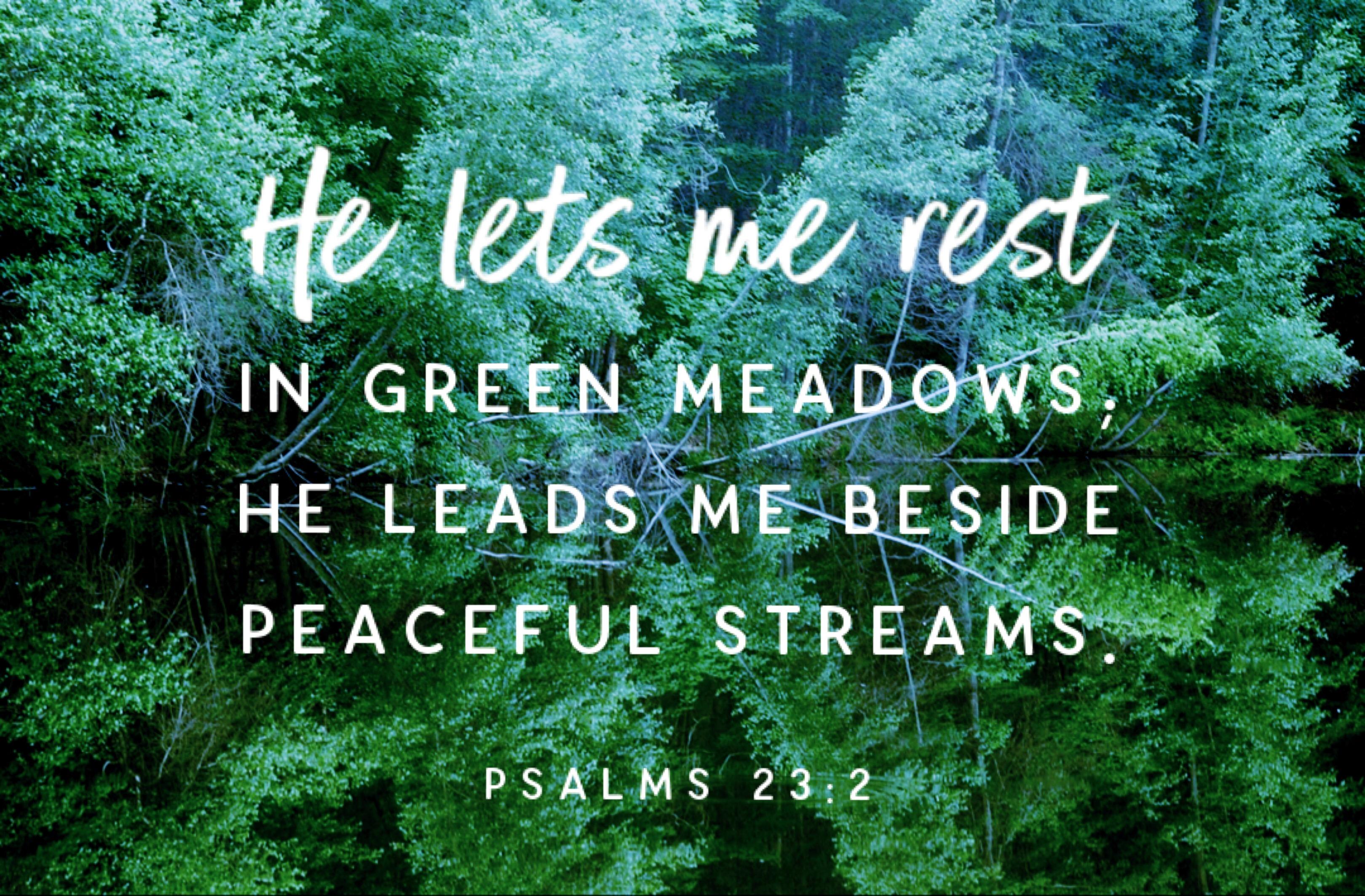 Psalm 23 | Craig T  Owens
